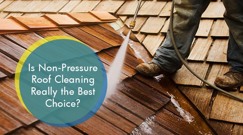 Is Non-Pressure Roof Cleaning Really the Best Choice?