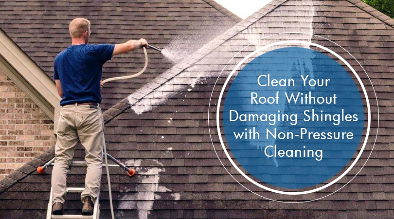 Clean Your Roof Without Damaging Shingles with Non-Pressure Cleaning